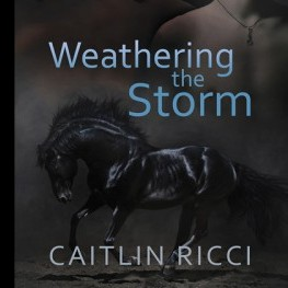 Five Stars for Weathering the Storm