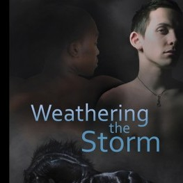 More Praise for Weathering the Storm