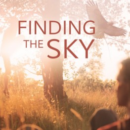 More Love for Finding the Sky