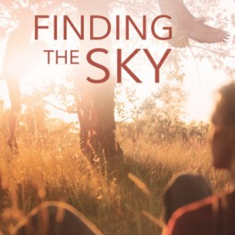 Finding the Sky is