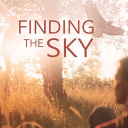 Wicked Reads Praises Finding the Sky