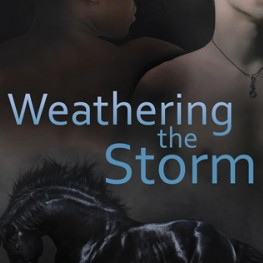 Weathering the Storm is now available