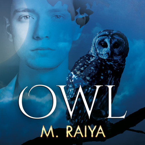 A Scene from Owl by M. Raiya