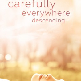 Review: carefully everywhere descending